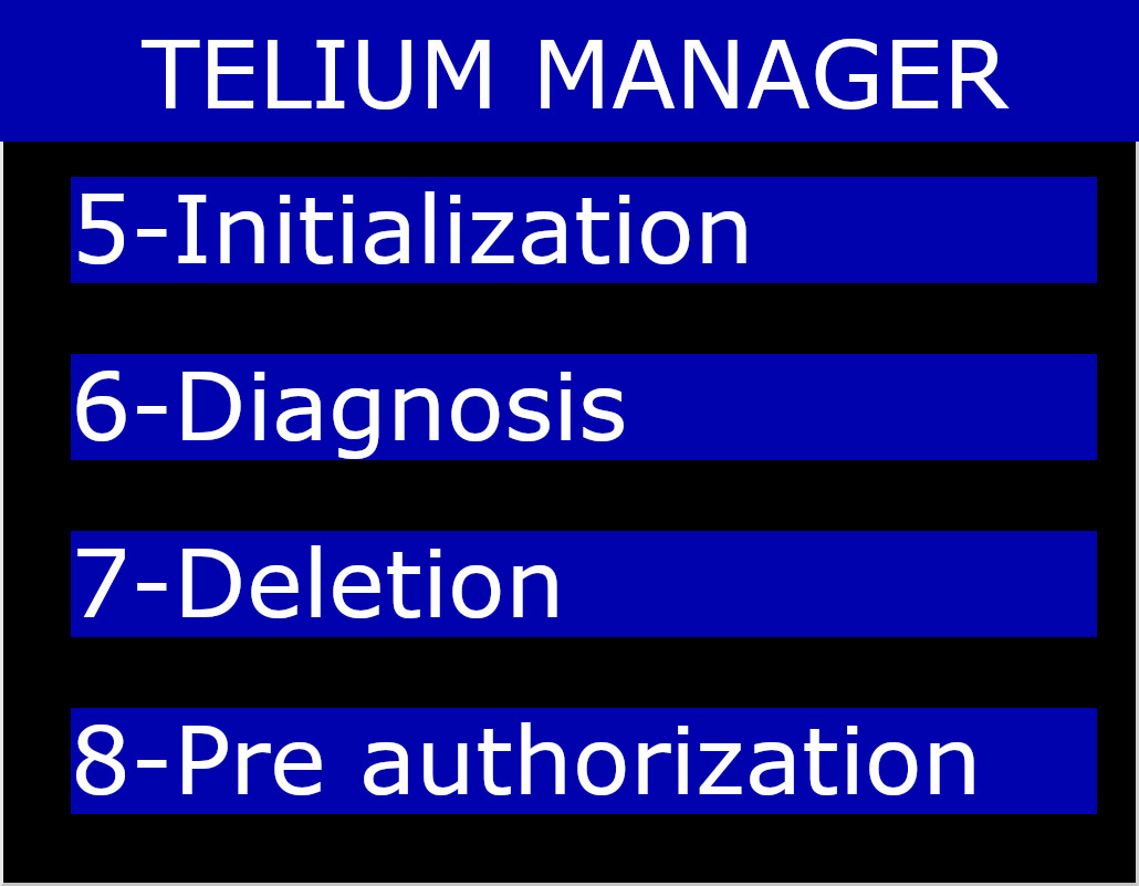 Telium Manager Menu on Initialization